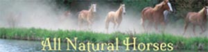 All Natural Horses ~ Organic equine supplements.